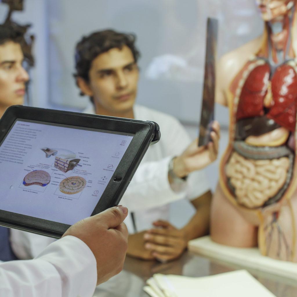 doctorado medicina